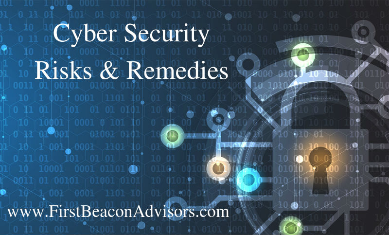 Cyber Security: Risks and Remedies